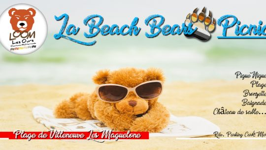 La Beach Bears Picnic